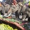 Zde se koná sloní snídaně