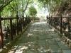 Cesta na vrchol Doi Tung