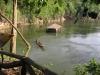 Plovoucí ubytování v národním parku Sai Yok