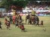 Závěr bitvy patří slonům