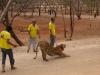 Tygří chrám, shromáždění účastníků