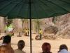 Tygří chrám, představení může začít