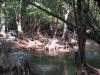 Pod vodopádem Thi Lo Su